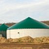 Green digester tanks in hay field
